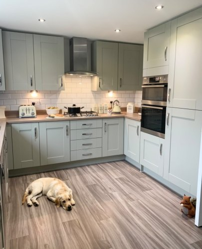 Cranbrook sage kitchen with woodern worktops and flooring with a labrador dog sat on the floor. Kitchen features silver handles and ivory small appliances