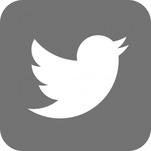 twitter logo in grey, bird in a box